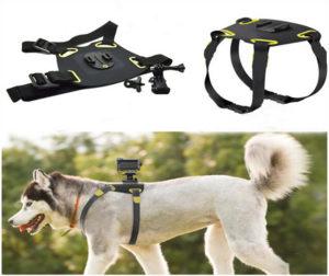 еластична-лента-стойка-за-куче-домашен-любимец-dog-fetch-gopro-екшън-спортна-видео-камера