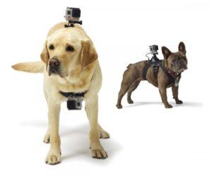 gopro-dog-harness-стойка-за-куче-маунт-mount-екшън-камера-спортна-видео-11